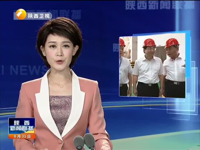 胡和平在陕西有色集团调研时强调:全力推进工业促投资稳增长 为全省经济平稳健康发展贡献力量