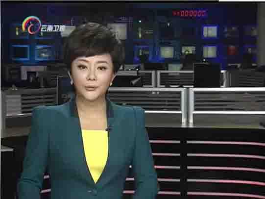 云南省有色金属产业转型升级 既需加快研发核心技术 也需培育产业集群
