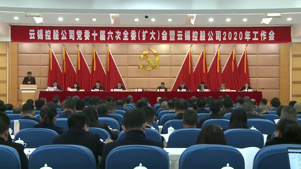 云锡控股公司党委十届六次全委(扩大)会暨控股公司2020年工作会胜利召开